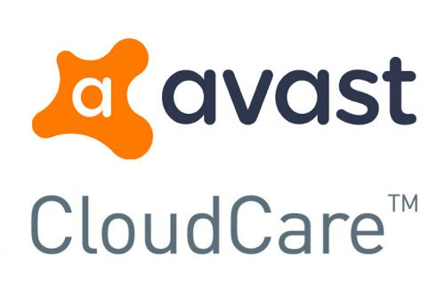 Avast Business Cloudcare - 2 year